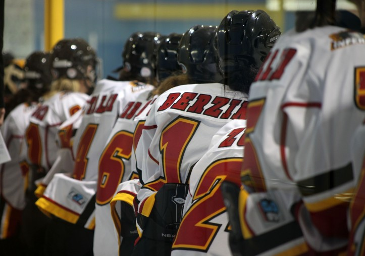Calgary Inferno bench 10 November 2013 - Brampton, ON, Canada by hockeyMedia